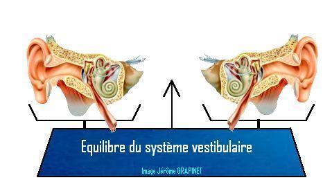 Etat d'équilibre du système vestibulaire= Stabilité des yeux